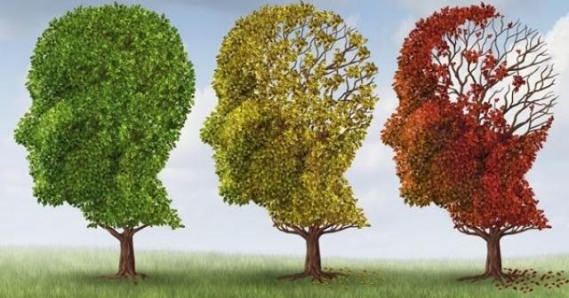 Alucinações e delírios em pessoas com demência
